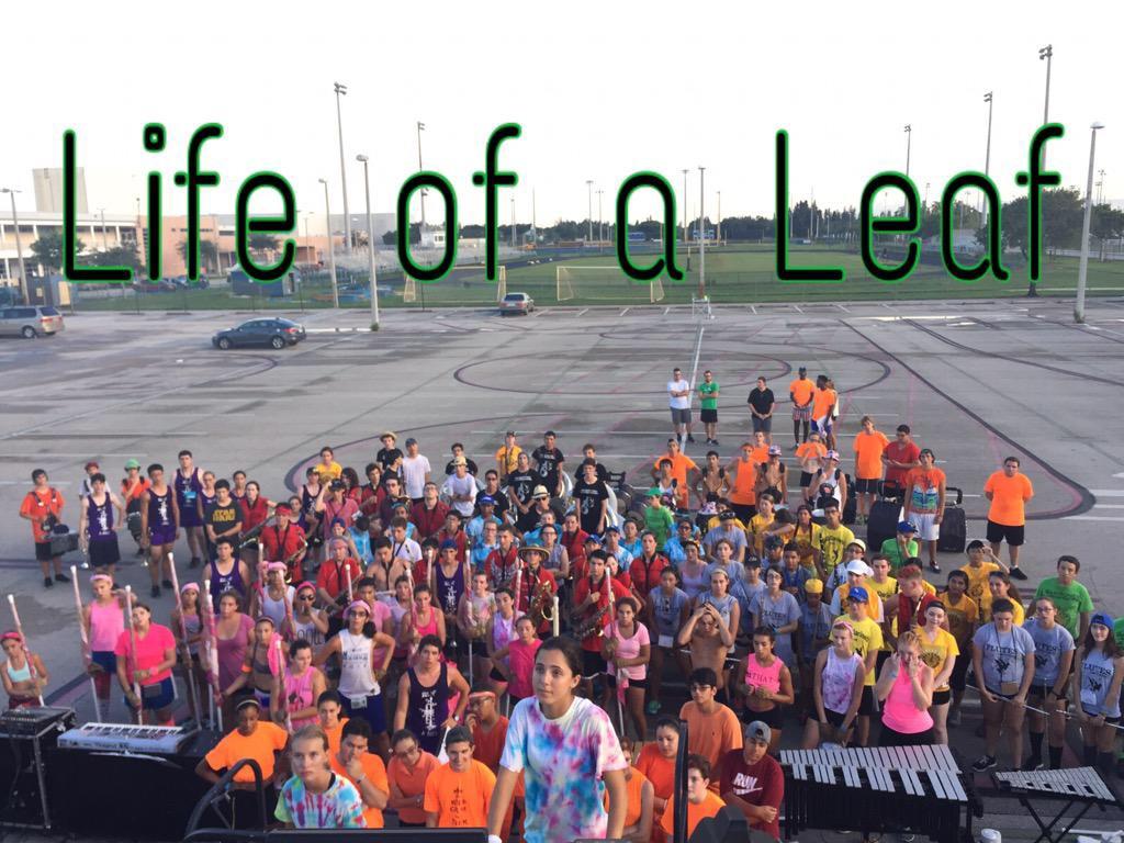 Life of a Leaf.jpg